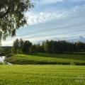 Усадьба Марьино Ленинградская область, пейзажный парк