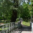 Мост через канал в Гатчинском парке