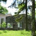 Гатчина, Березовый домик