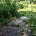 Петергоф Собственная дача, каменная лестница в парке