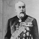 Действительный титулярный советник гр. С.Д. Шереметев (1844-1918)