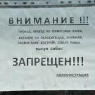 Петергоф усадьба Знаменка