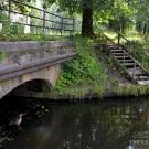 Петергоф усадьба Знаменка, мост в парке