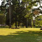 Усадьба Осоргино парк