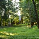 Усадьба Осоргино, парк (углубление рельефа - возможно ложе старого пруда)