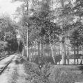 Усадьба Петровское-Разумовское, фото конец XIX - нач. XX вв.