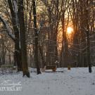 Усадьба Райки, парк