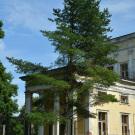 Усадьба Сергиевка, фрагмент фасада главного дома