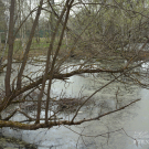Усадьба Щекотово, пруд