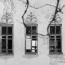 Усадьба Дубровка Калужская область, дворец, фрагмент паркового фасада