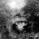 Усадьба Горенки мост в парке