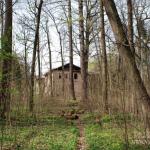 Усадьба Измалково главный дом, вид из парка