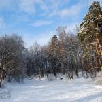 Усадьба Изварино, парк с прудом