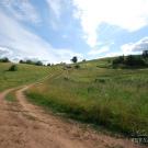 Дорога в Мальский монастырь