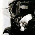 На охоту. Фото М.М. Пришвина, 1930-е гг.