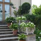 Петергоф, парк Александрия. Лестница Фермерского дворца