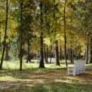 Усадьба Покровское-Рубцово, парк