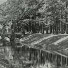 Перспектива Крестового канала в Александровском парке