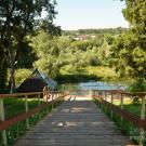 Усадьба Садки лестница к пруду