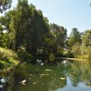 Усадьба Садки пруд