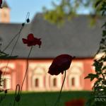 Саввино-Сторожевский монастырь, Царицыны палаты