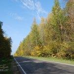 Дорога в усадьбу Шарапово