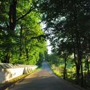 Дорога в Снетогорский монастырь