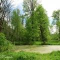 Усадьба Стеблево, парк
