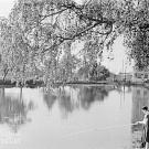 Петропавловский парк в Ярославле (Петропавловский парк при Ярославской Большой мануфактуре).