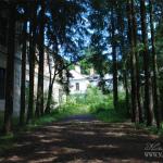Усадьба Александрово Псковская область