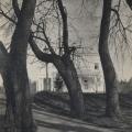 Усадьба Афинеево аллея в парке