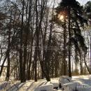 Усадьба Бережки Рузский район