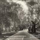 Усадьба Богданово-Витово, архивное фото