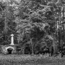 Усадьба Богородское, уголок парка