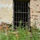 Усадьба Братково, Спасская церковь