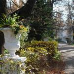 Усадьба Быково, вазон в парке