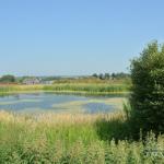 Усадьба Даниловское пруд
