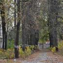 Усадьба Дугино, аллея перед главным домом