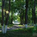 Усадьба Ершово аллея в парке