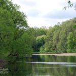 Усадьба Городня Калужская область, пруд в парке