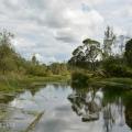 Усадьба Извара пруд