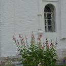 Усадьба Красное, церковь Иоанна Богослова, фрагмент фасада