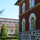 Лисино-Корпус, Лисинский лесной колледж