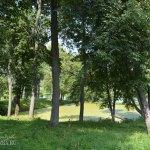 Усадьба Лопасня-Зачатьевское, парк с прудом