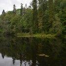 Усадьба Лопухинка радоновое озеро