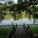Усадьба Люблино парк