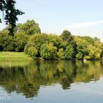 Усадьба Люблино парк с прудом