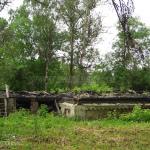 Сгоревший флигель в усадьбе Мальце-Бродово. Фото Натальи Бондаревой 2006 г.