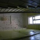 Усадьба Мамоново Гусева полоса, плафон над парадной лестницей