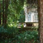 Усадьба Мамоново Гусева полоса, главный дом со стороны парка